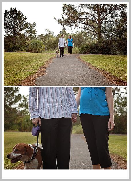 Tampa Maternity Portraits