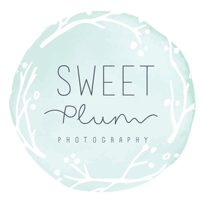 Sweet Plum Photography, Tampa Boudoir, Family, and Newborns